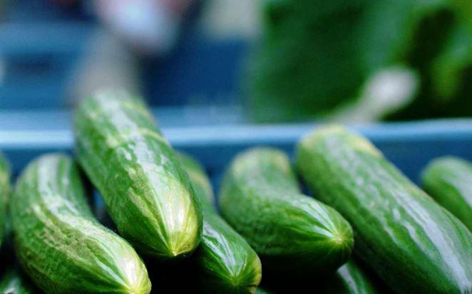 Kaufland ponúka slovenské uhorky bez obalu, ročne sa má ušetriť 15 ton plastu