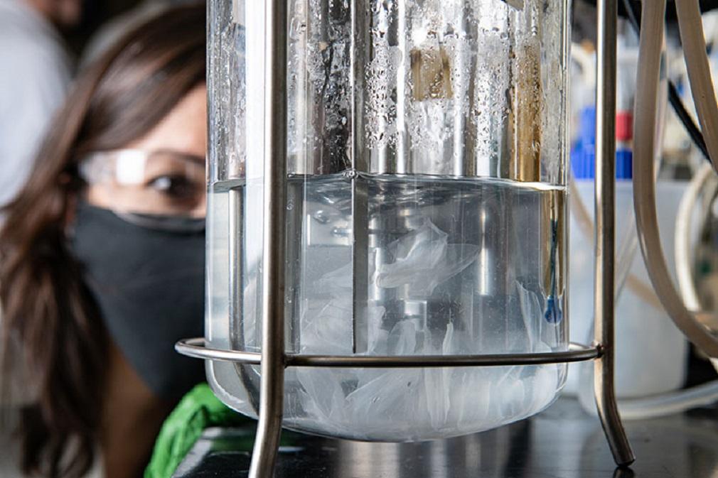 Recyklácia plastov pomocou enzýmov prináša viaceré výhody, ukázal výskum