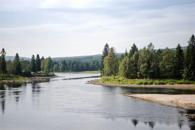 COVID-19 ovplyvňuje legislatívu v oblasti životného prostredia