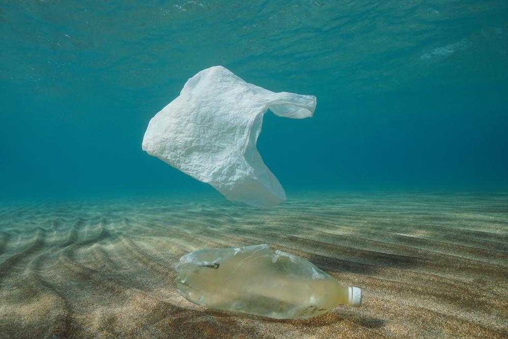 Na plastoch v oceáne vzniká nový ekosystém. Zoznámte sa s plastosférou