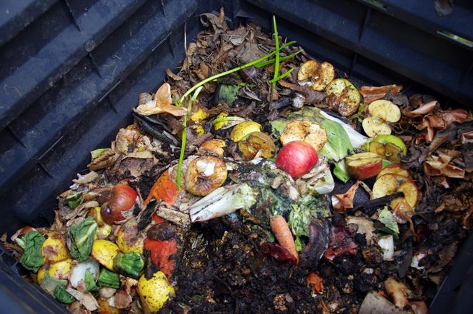 Aké budú novinky v zbere biologicky rozložiteľného kuchynského odpadu?