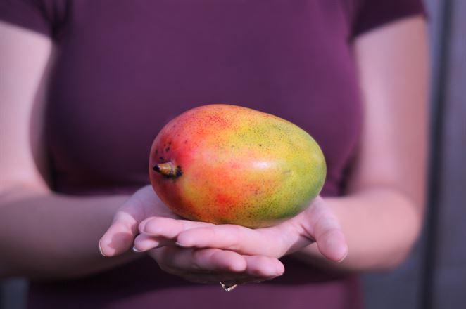 Kontamináciu pôdy by mohla vyriešiť mangová šupka