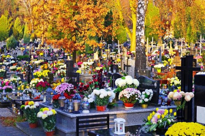 Umelé kvety z hrobov do triedeného zberu nepatria. Existujú aj ekologickejšie alternatívy