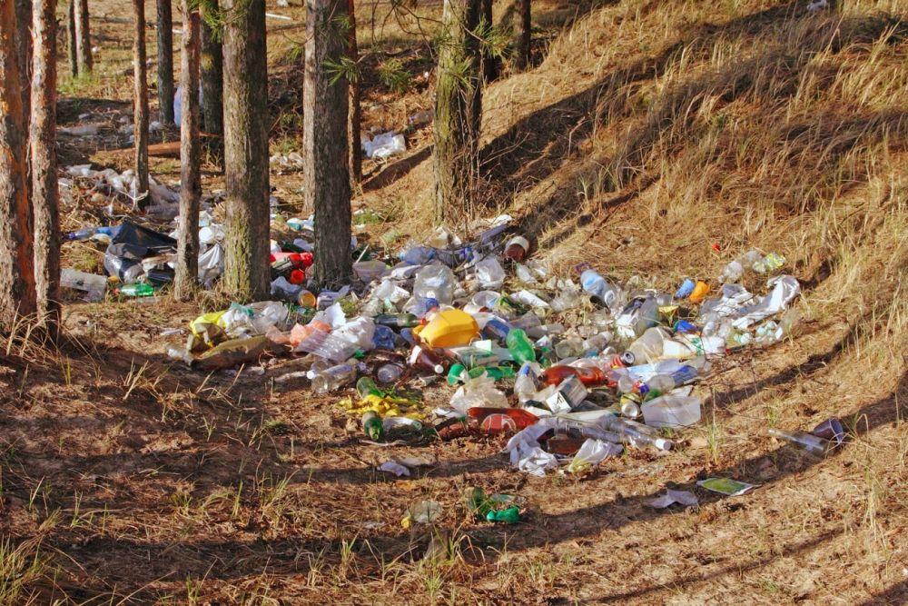 Iniciatíva Vezmi si ma už vyzbierala viac ako tri tony voľne pohodeného odpadu