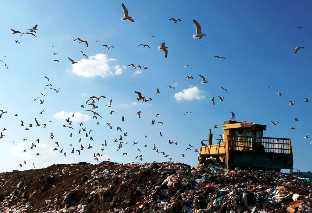 TOP 10 najčítanejších článkov o odpadoch v roku 2020