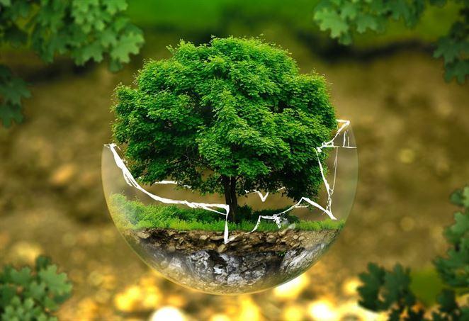 environmentálna značka