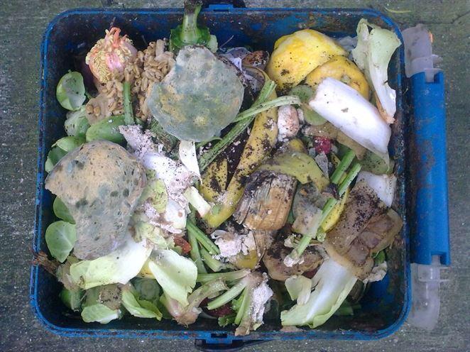 Potraviny ako odpad?