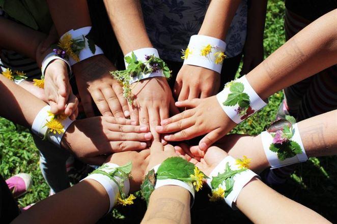 Program Envirogranty prerozdelí  neziskovým organizáciám 100-tisíc eur