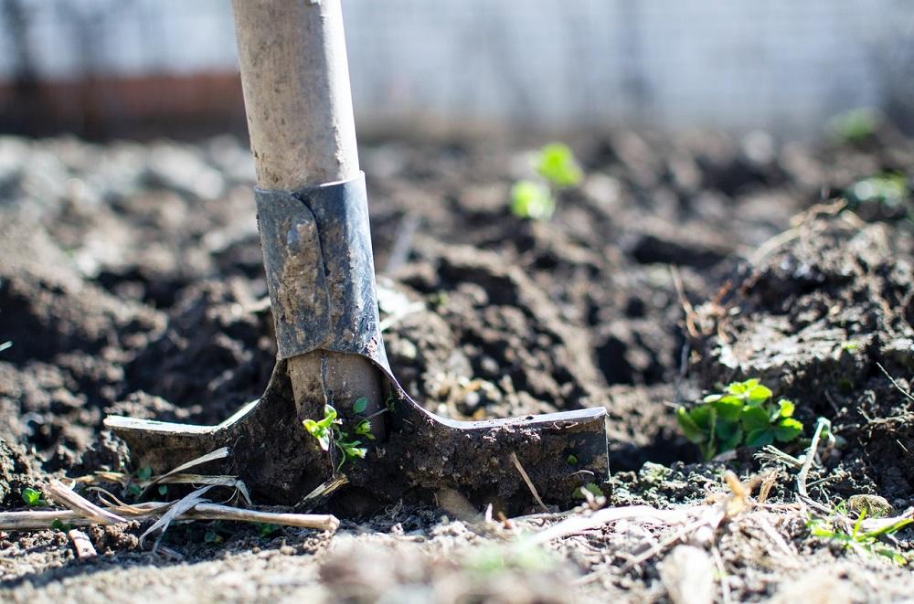 Z mikroplastov sa uvoľňujú znečisťujúce látky do vrchných vrstiev pôdy, tvrdí štúdia