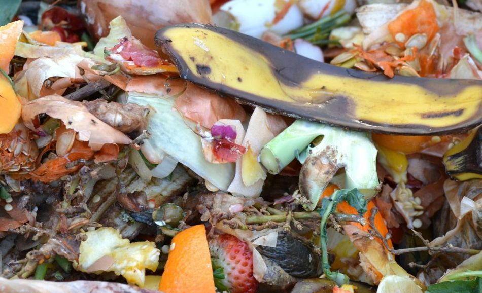 Čo vyhadzovať a nevyhadzovať do kuchynského odpadu?