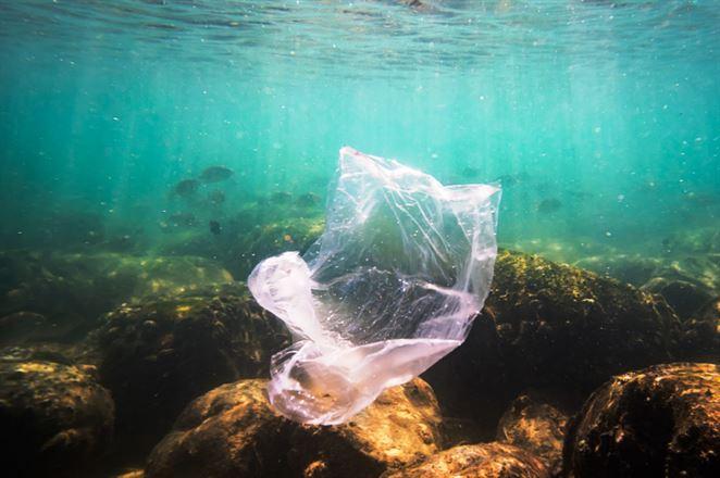 Ako končia plasty v oceáne a akými krokmi tomu vieme zabrániť?