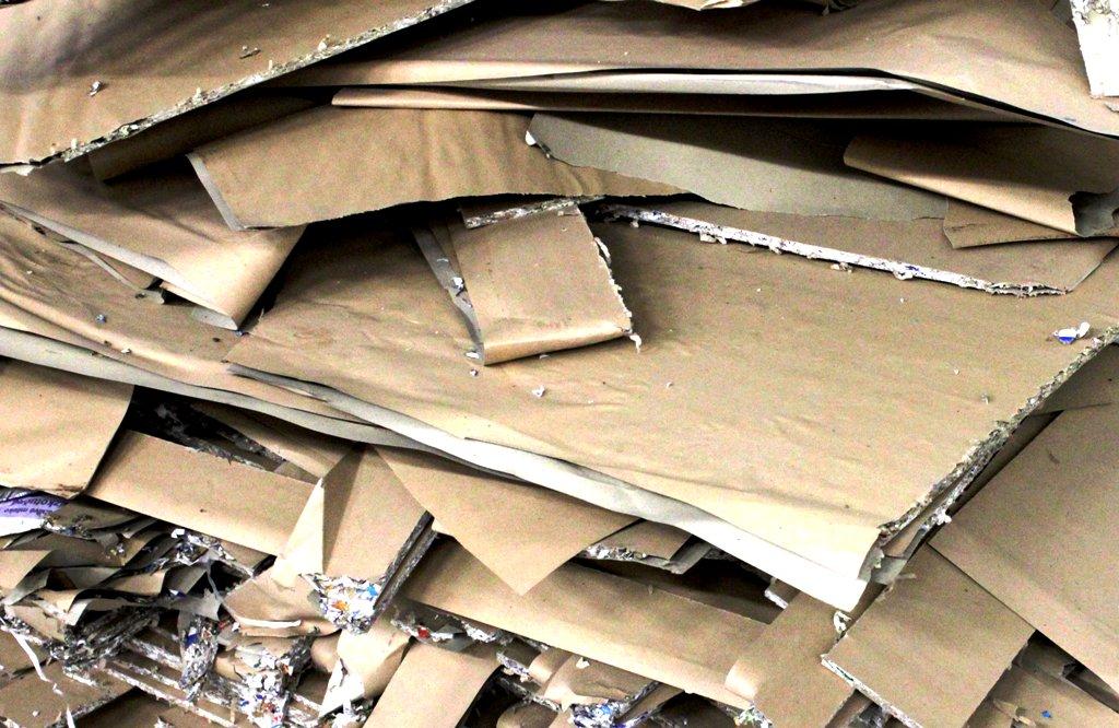Školy majú pri školskom zbere novú povinnosť, ukladá im ju zákon o odpadoch