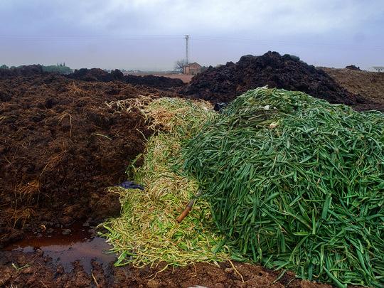 Slovensko má na skládkach priveľa bioodpadov